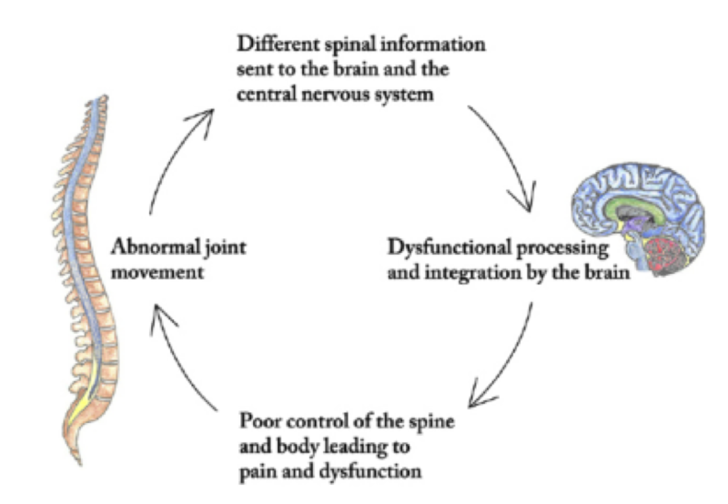 Subluxation cycle