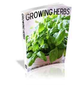 Medicinal plants zone natural remedies herbs ebooks now please check your email to confirm your request so i can send you the ebook fandeluxe Ebook collections