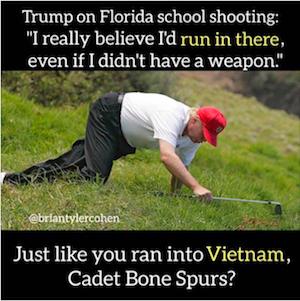 Trump Comic