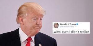 Trump resume