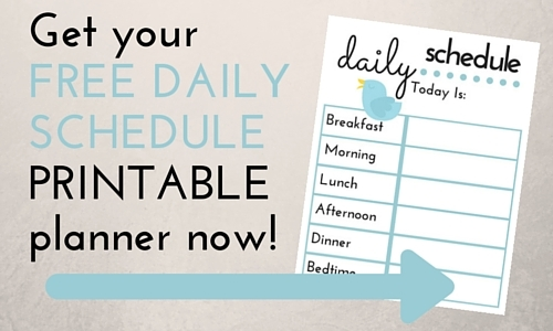 daily schedule form