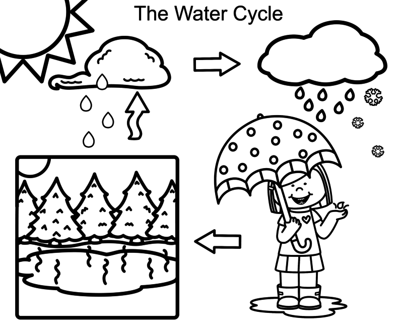 Water Cycle Fun: Homeschool Days Hop ⋆ I have a Future and a Hope