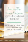 Tracking blog income expenses pin