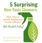 Green cleaning guide image