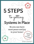 5 steps to getting systems in place small