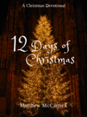 Copy of 12 days of xmas book cover   thumbnail %281%29