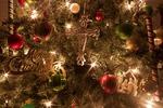 Christmas tree 230269 1920