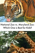 Which zoo is best 1