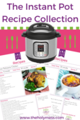 The instant pot recipe pin