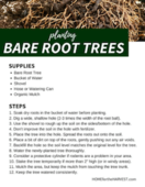 Bare root trees