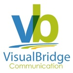 Visiual bridge logo final 1