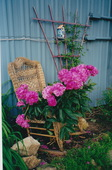 Garden wicker plant support