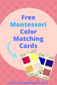 Montessori activity series pins (4)