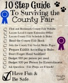 Countyfairguidesmall