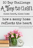 A time to clean 30 day challenge