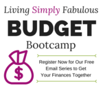 Copy of lsf budget bootcamp