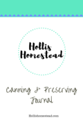 Canning preservingjournal (1)