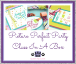 Picture perfect party ciab marketing imagae