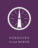 Pursuing true north %282%29