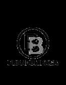 Logo4 2