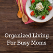 Organized living for busy moms instagram profile pic