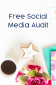 Free socialmedia audit