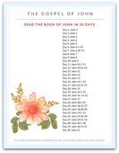 The gospel of john bible reading plan 450